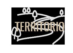 territorio-icon